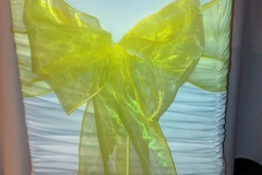 organza yellow